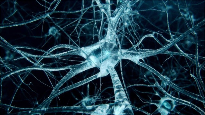 neurons_stock_footage_3d_model_39f42b32-49a8-4efb-bdcd-f98b3007a2d5-1024x575